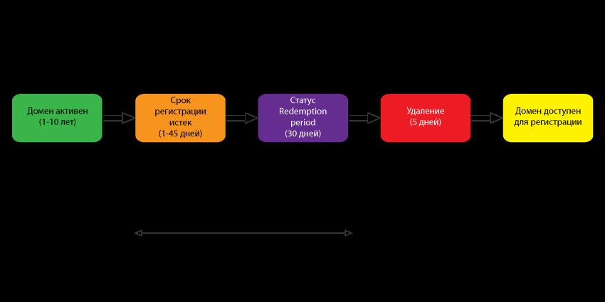 Жизненный цикл доменого имени